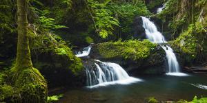 Onomea Waterfalls, Hawaii Tropical Botanical Garden, Hamakua Coast, the Big Island, Hawaii, Usa by Russ Bishop