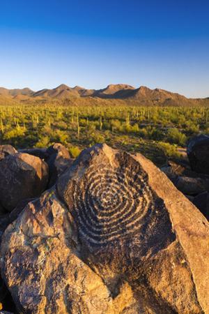 Petroglyphs on Signal Hill, Saguaro National Park, Tucson, Arizona, Usa by Russ Bishop