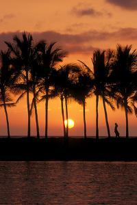 Silhouetted palm trees and woman at sunset, Kohala Coast, The Big Island, Hawaii by Russ Bishop