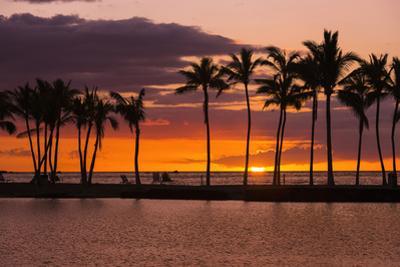 Sunset Through Silhouetted Palms at Anaehoomalu Bay, Kohala Coast, the Big Island, Hawaii, Usa by Russ Bishop
