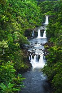 Umauma Falls along the lush Hamakua Coast, The Big Island, Hawaii, USA by Russ Bishop