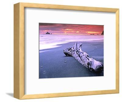 Rialto Beach Sunset with Driftwood Log