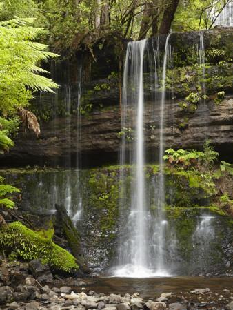 https://imgc.artprintimages.com/img/print/russell-falls-mount-field-national-park-tasmania-australia_u-l-pdl3xr0.jpg?p=0