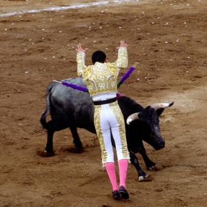 Bullfight or Fiesta Brava, San Luis Potosi, Mexico by Russell Gordon