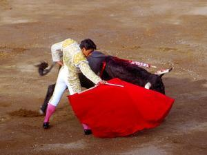 Matador at Monumental El Paso, Bullfight (Fiesta Brava), San Luis Potosi, Mexico by Russell Gordon