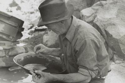 Man Panning Gold at Pinos Altos, New Mexico
