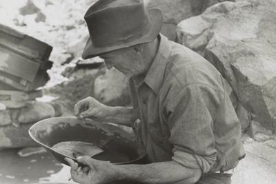Man Panning Gold at Pinos Altos, New Mexico