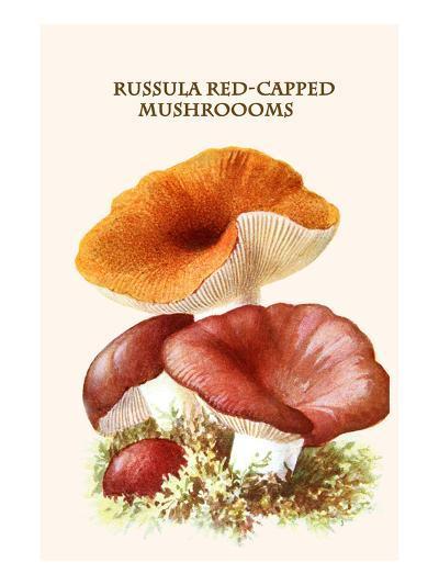 Russula Red-Capped Mushroooms-Edmund Michael-Art Print