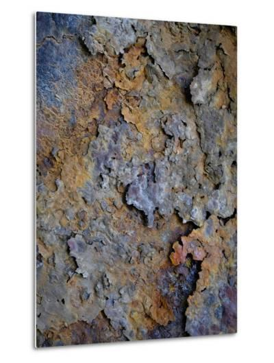Rust 3-Doug Chinnery-Metal Print