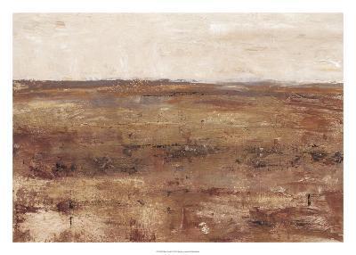 Rust Terrain I-Ethan Harper-Art Print