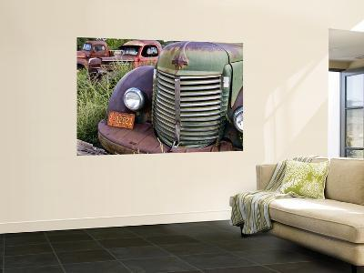 Rusted Pick-Up Trucks-Ray Laskowitz-Wall Mural