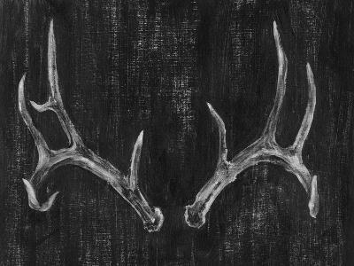 Rustic Antlers II-Ethan Harper-Art Print
