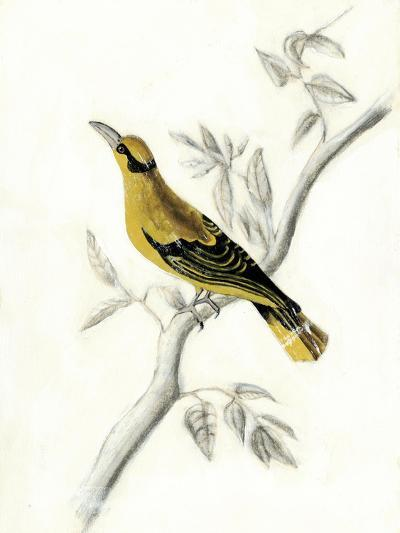 Rustic Aviary II-Naomi McCavitt-Art Print