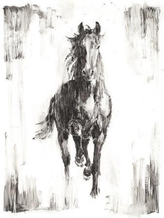 https://imgc.artprintimages.com/img/print/rustic-black-stallion-i_u-l-q1bp63j0.jpg?artPerspective=n