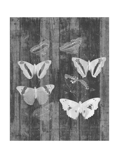 Rustic Butterfly Chart I-Jennifer Goldberger-Art Print