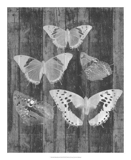 Rustic Butterfly Chart II-Jennifer Goldberger-Art Print