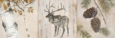 https://imgc.artprintimages.com/img/print/rustic-forest-panel_u-l-pgouw30.jpg?p=0