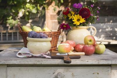 https://imgc.artprintimages.com/img/print/rustic-fruit-still-life-on-garden-table-in-front-of-farmhouse_u-l-q137xlc0.jpg?p=0