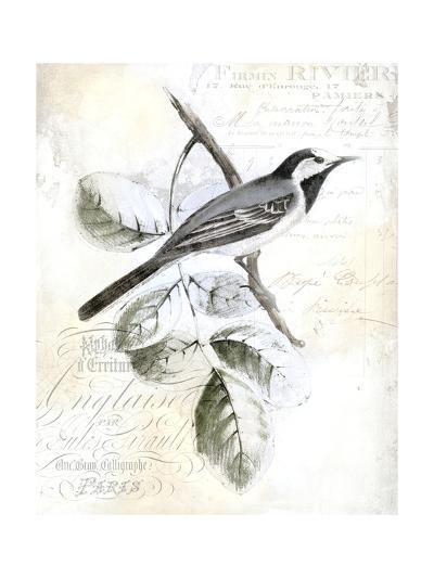 Rustic Gould I-Studio W-Art Print