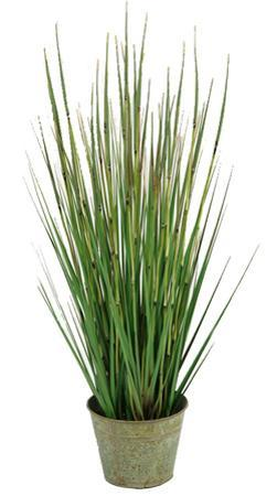 "Rustic Onion Grass Tin - 31"""