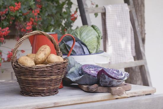 Rustic Still Life with Potatoes and Cabbage in Front of Farmhouse-Eising Studio - Food Photo and Video-Photographic Print