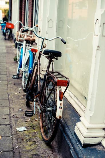 Rusty Bike-Erin Berzel-Photographic Print