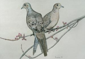 Two Birds on Branch by Rusty Frentner