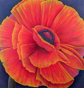 Big Poppy by Ruth Addinall