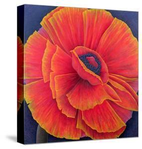 Big Poppy by Ruth Addinall