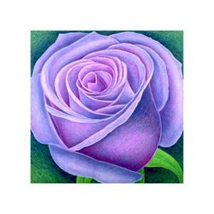 Big Rose, c.2004 by Ruth Addinall