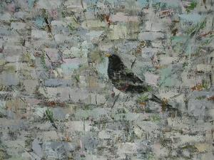 Blackbird in Tree by Ruth Addinall