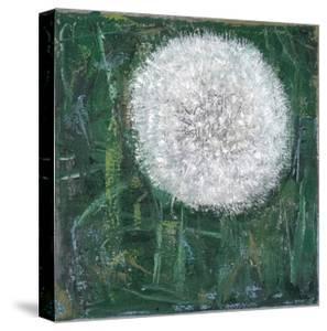 Dandelion Head by Ruth Addinall