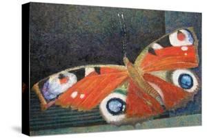 Papillon by Ruth Addinall