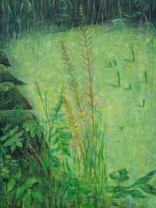 Study in Green - Pond by Ruth Addinall