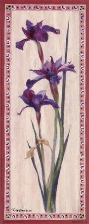 Iris Panel II