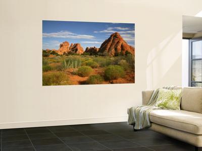 Desert Landscape and Rock Formations of Navajo Sandstone Near Devils Garden Trail
