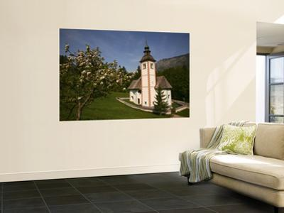 The Holy Spirit Church with Apple Tree in Blossom, Near Southern Shore of Lake Bohinj