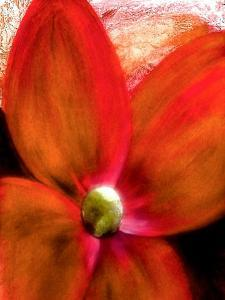 Big Abstract Flower by Ruth Palmer 2