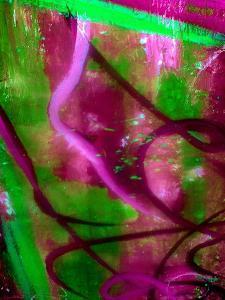 Fuschia Dreams I by Ruth Palmer 2