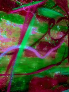 Fuschia Dreams II by Ruth Palmer 2