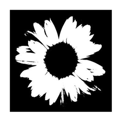 Black And White Abstract Daisy II by Ruth Palmer