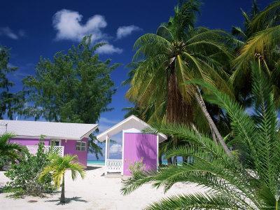 Colourful Beach Hut Beneath Palm Trees, Rum Point, Grand Cayman, Cayman Islands, West Indies