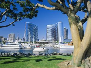 Embarcadero Marina, San Diego, California, USA by Ruth Tomlinson
