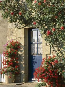 Exterior of a Blue Door Surrounded by Red Flowers, Roses and Geraniums, St. Cado, Brittany, France by Ruth Tomlinson