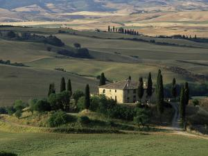 Farmhouse and Cypress Tres in the Earning Morning, San Quirico d'Orcia, Tuscany, Italy by Ruth Tomlinson