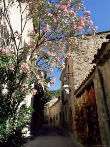 Flower Filled Village Street, St. Guilhem-Le-Desert, Herault, Languedoc-Roussillon, France, Europe by Ruth Tomlinson