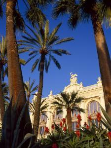 Palm Trees and Flowers in Front of the Casino at Monte Carlo, Monaco by Ruth Tomlinson