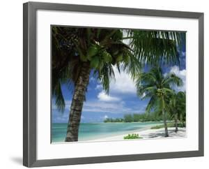 Palms on Shore, Cayman Kai Near Rum Point, Grand Cayman, Cayman Islands, West Indies by Ruth Tomlinson