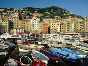 The Harbour, Camogli, Portofino Peninsula, Liguria, Italy by Ruth Tomlinson