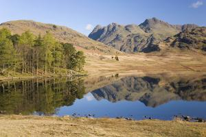 The Langdale Pikes Reflected in Blea Tarn, Above Little Langdale, Lake District National Park by Ruth Tomlinson